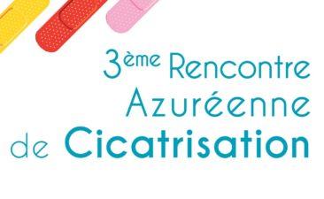 3E Rencontre Azureenne De Cicatrisation  Vignette