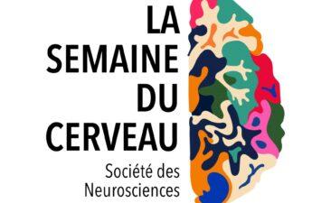 Semaine Du Cerveau Vignette