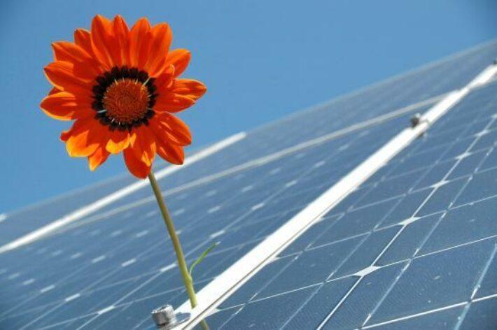Developpement Durable  Panneaux Solaires
